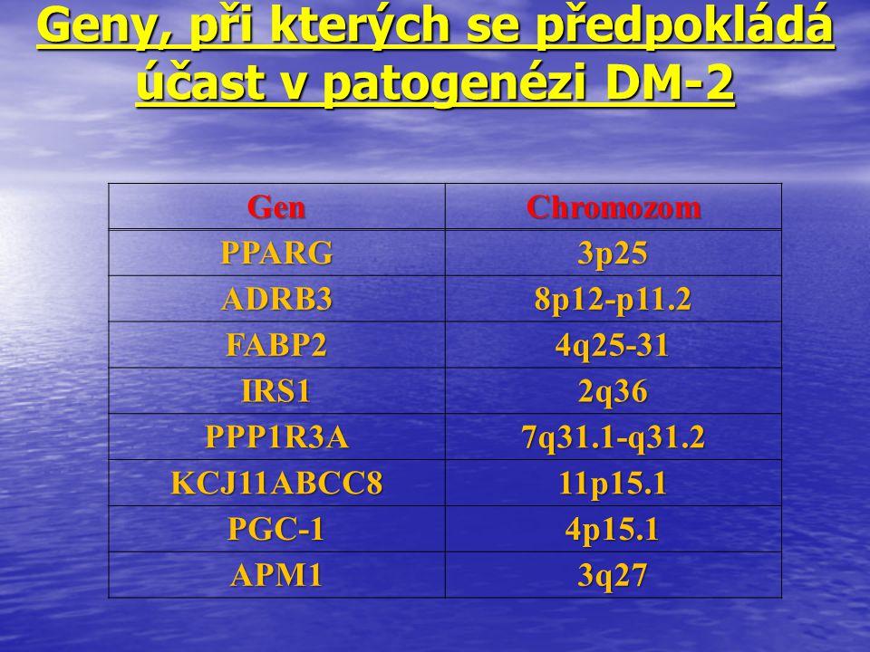 Geny, při kterých se předpokládá účast v patogenézi DM-2