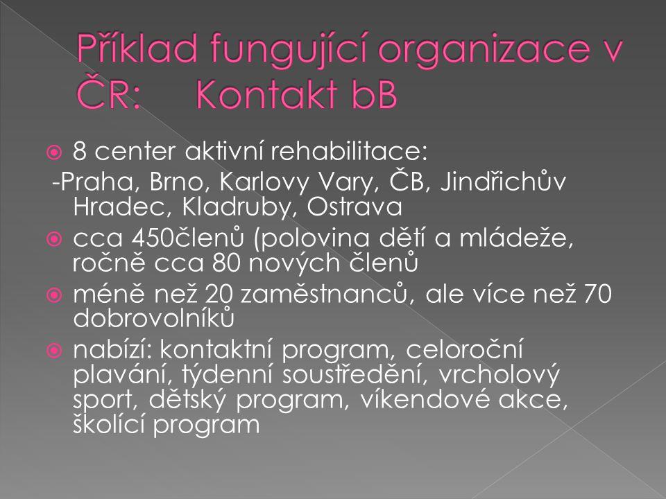 Příklad fungující organizace v ČR: Kontakt bB