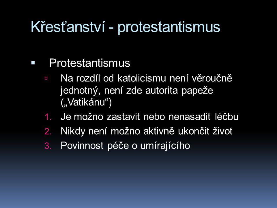 Křesťanství - protestantismus