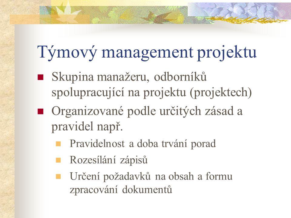 Týmový management projektu