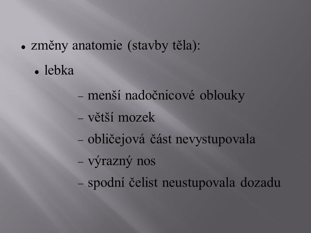 změny anatomie (stavby těla):
