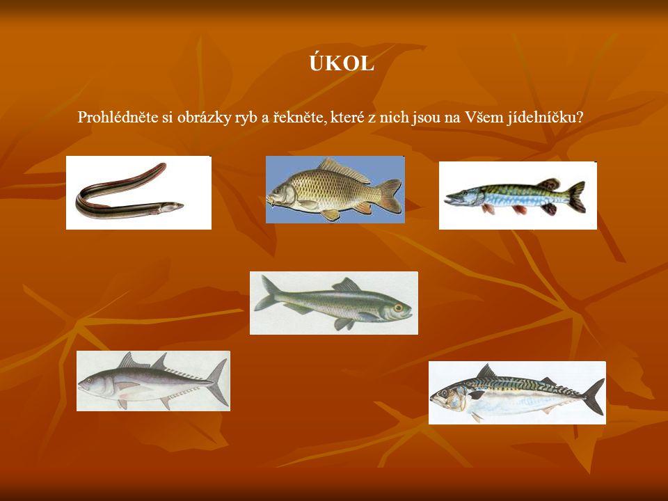 ÚKOL Prohlédněte si obrázky ryb a řekněte, které z nich jsou na Všem jídelníčku