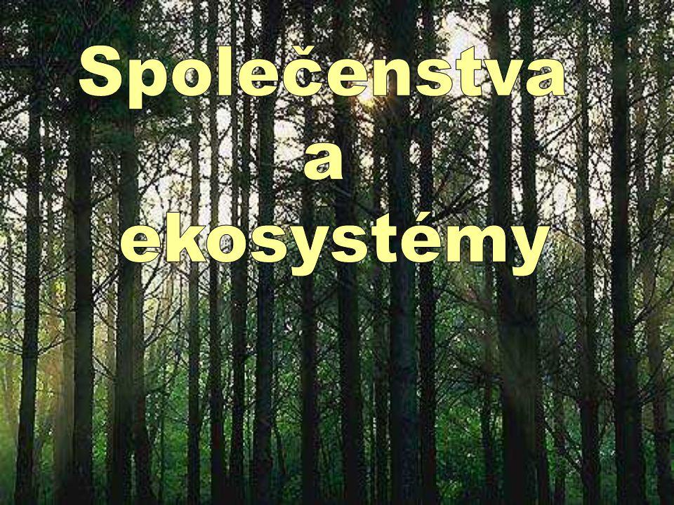 Společenstva a ekosystémy