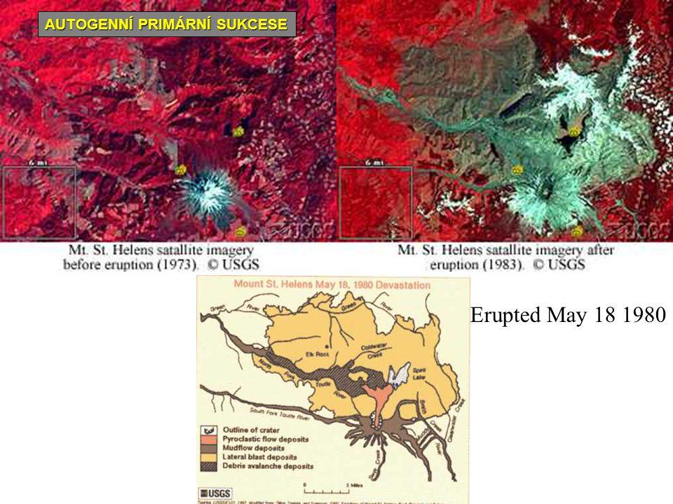 Erupted May 18 1980 AUTOGENNÍ PRIMÁRNÍ SUKCESE