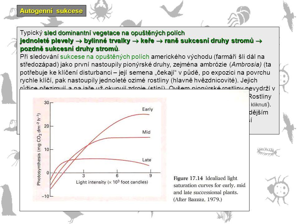 Autogenní sukcese Typický sled dominantní vegetace na opuštěných polích.