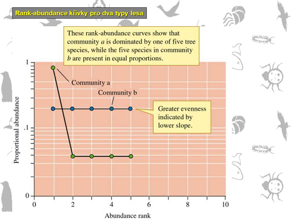 Rank-abundance křivky pro dva typy lesa