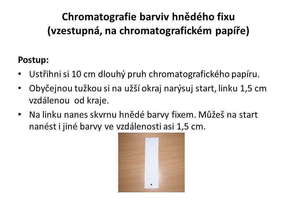 Chromatografie barviv hnědého fixu (vzestupná, na chromatografickém papíře)