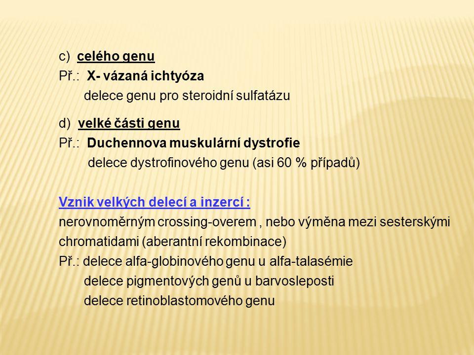 c) celého genu Př.: X- vázaná ichtyóza. delece genu pro steroidní sulfatázu. d) velké části genu.
