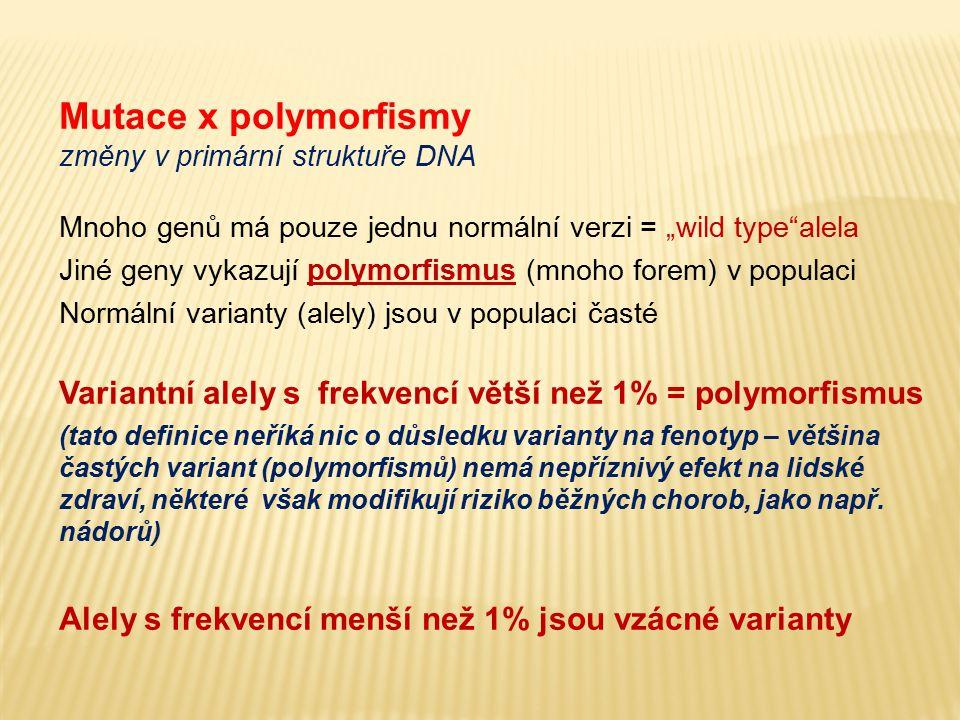 """Mutace x polymorfismy změny v primární struktuře DNA. Mnoho genů má pouze jednu normální verzi = """"wild type alela."""