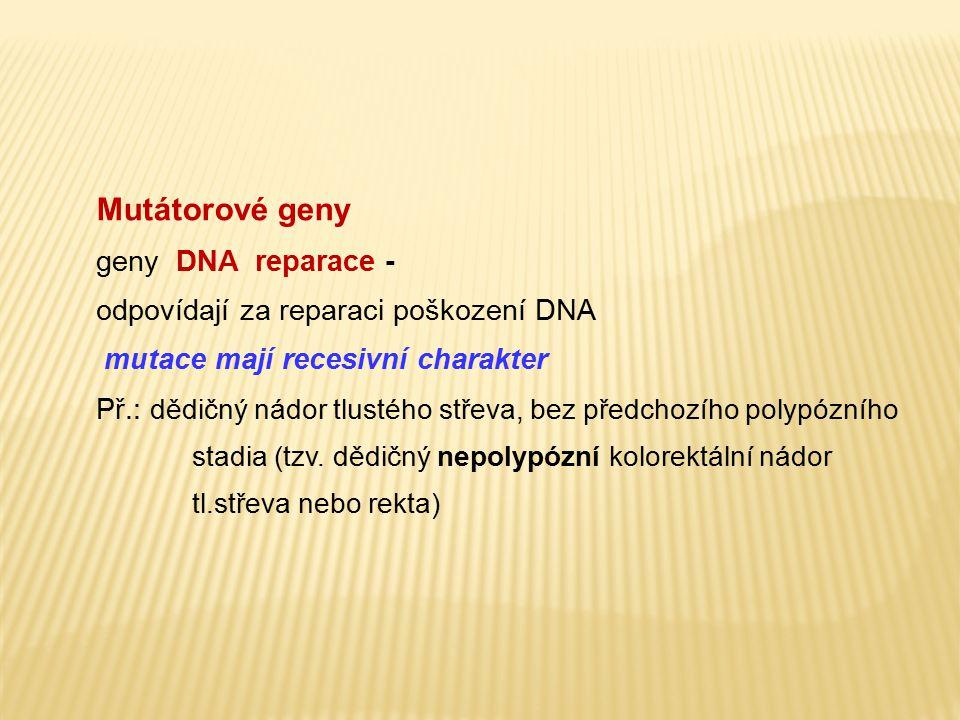 Mutátorové geny geny DNA reparace -