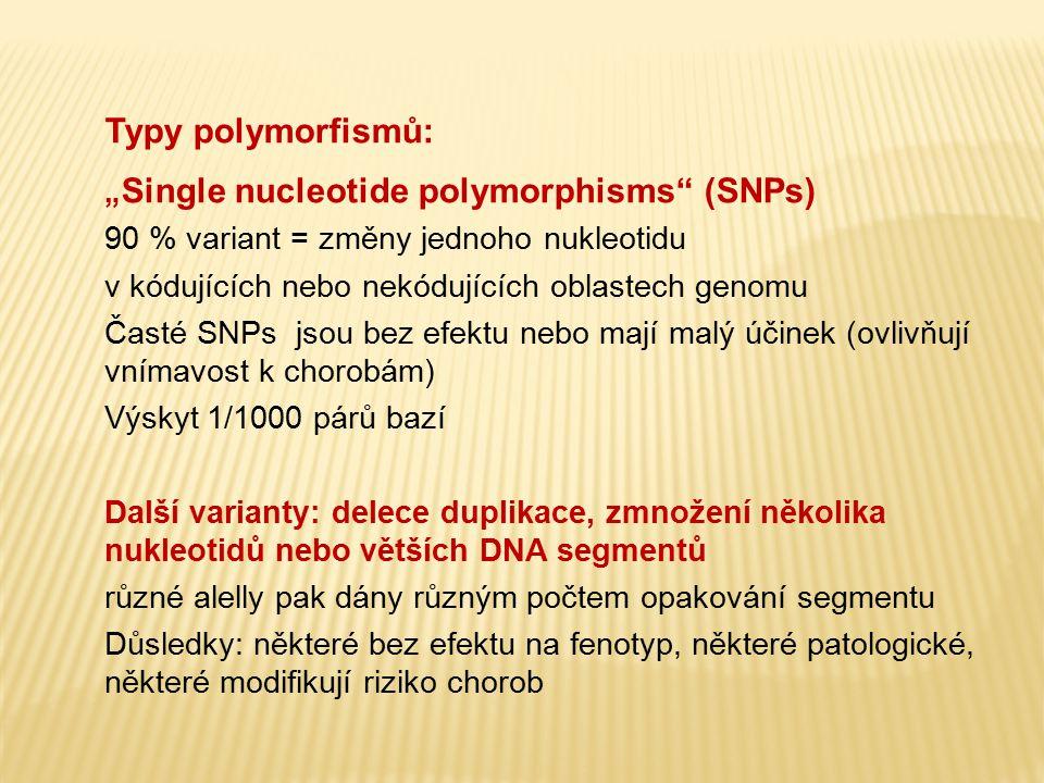 """Typy polymorfismů: """"Single nucleotide polymorphisms (SNPs)"""