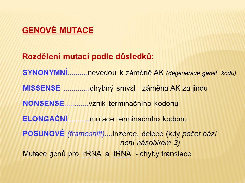 Rozdělení mutací podle důsledků: