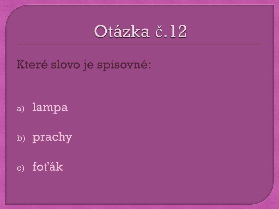 Otázka č.12 Které slovo je spisovné: lampa prachy foťák