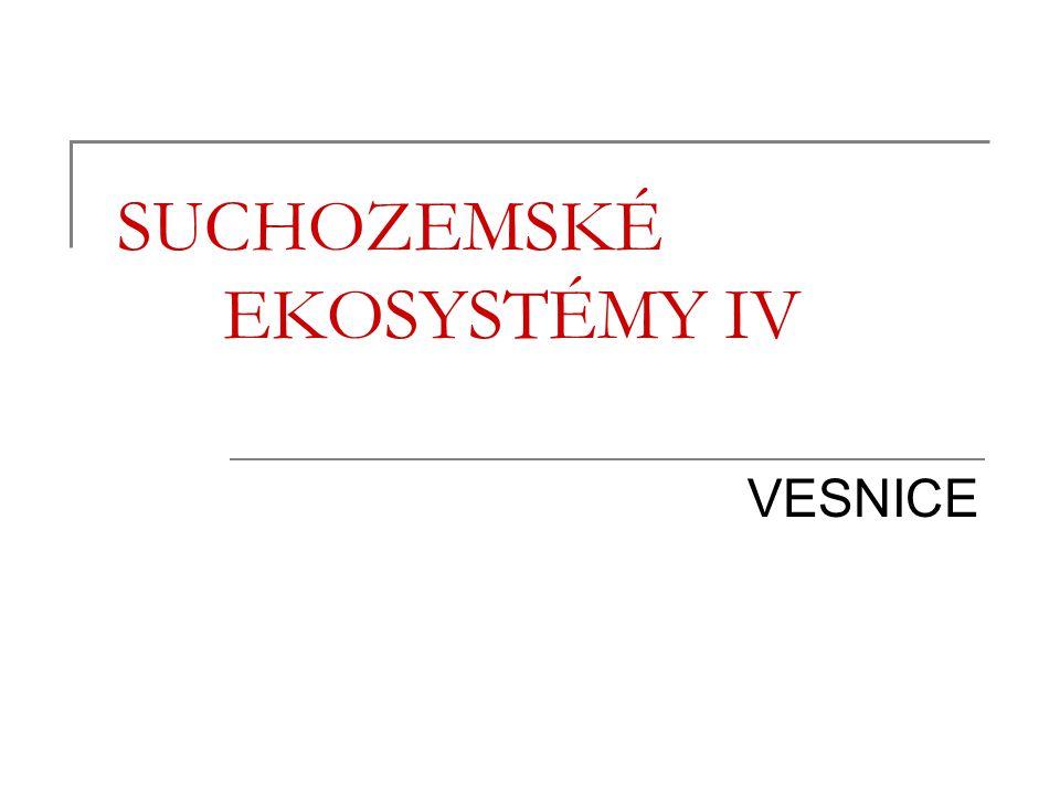 SUCHOZEMSKÉ EKOSYSTÉMY IV