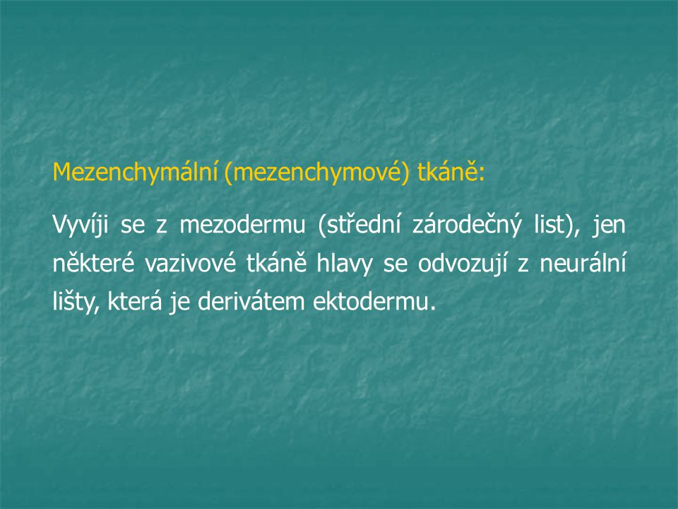 Mezenchymální (mezenchymové) tkáně:
