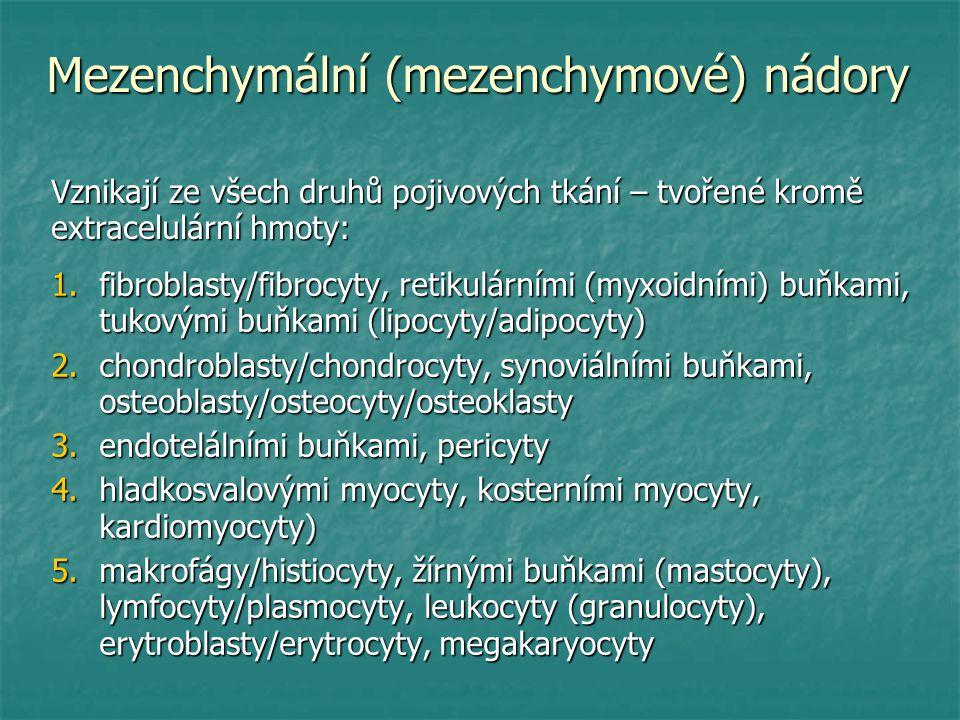 Mezenchymální (mezenchymové) nádory