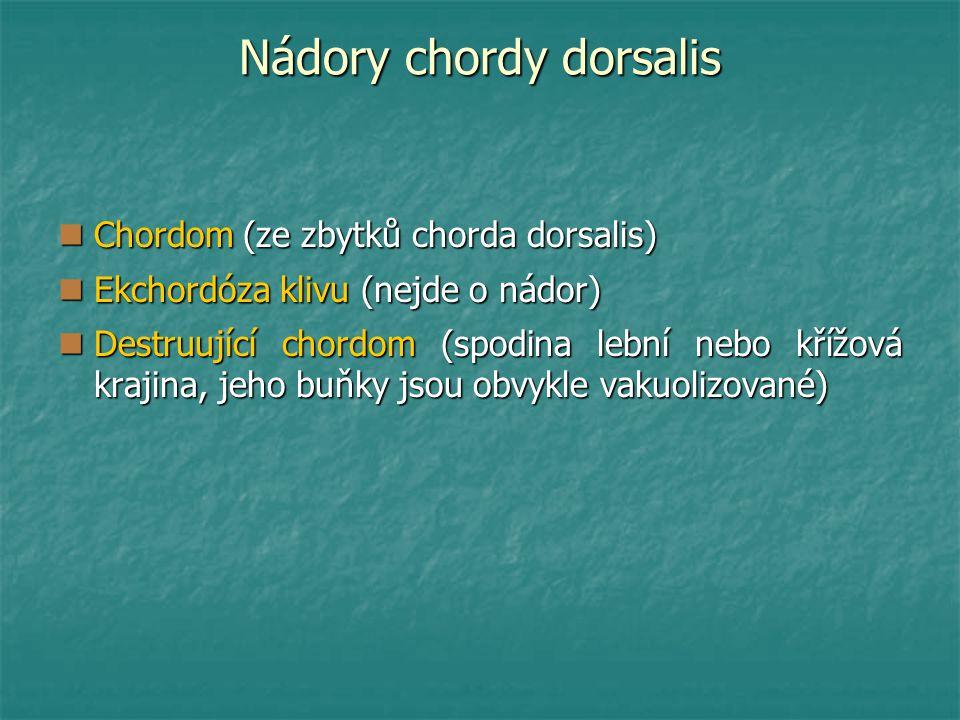 Nádory chordy dorsalis