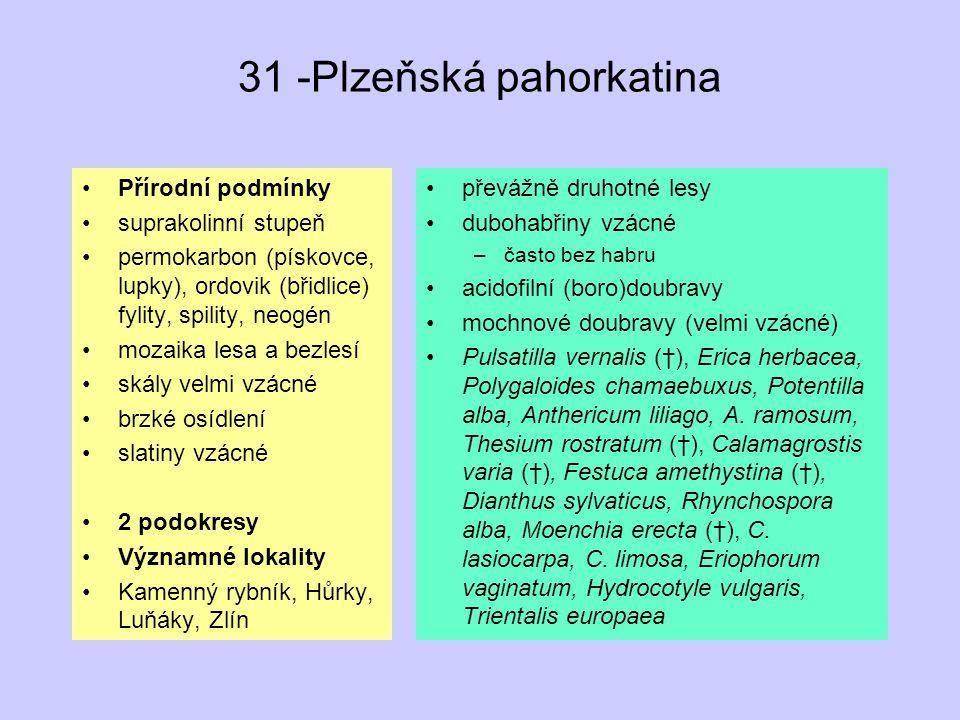 31 -Plzeňská pahorkatina