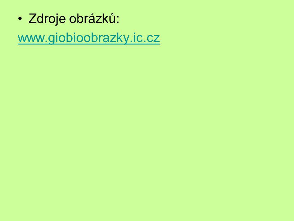 Zdroje obrázků: www.giobioobrazky.ic.cz