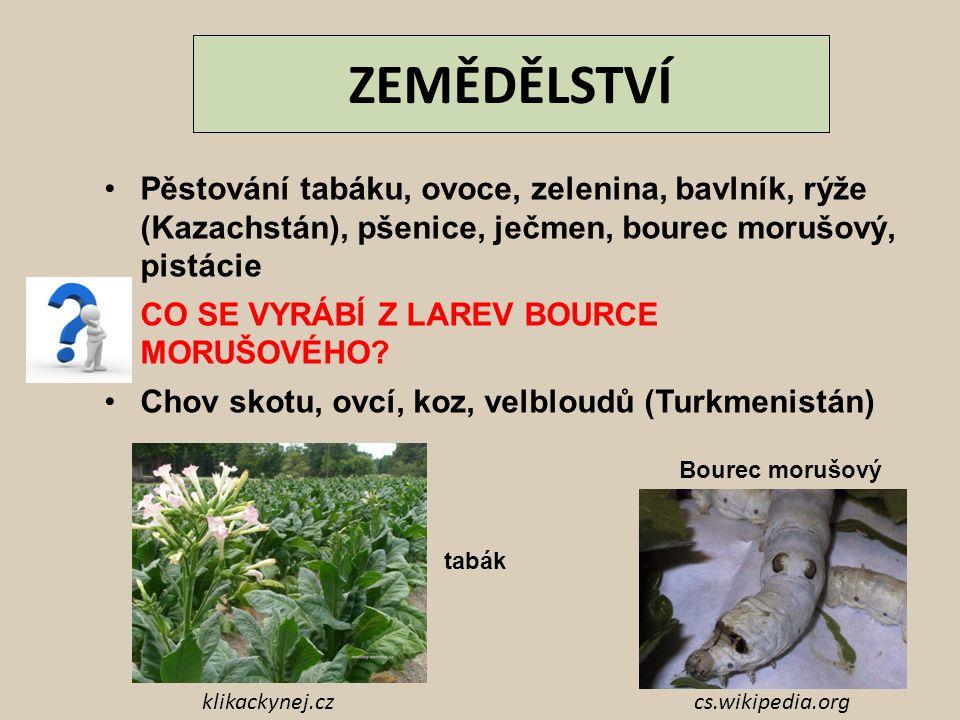 ZEMĚDĚLSTVÍ Pěstování tabáku, ovoce, zelenina, bavlník, rýže (Kazachstán), pšenice, ječmen, bourec morušový, pistácie.
