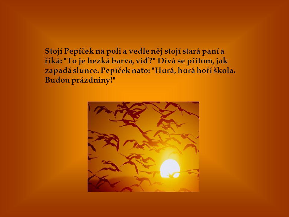 Stojí Pepíček na poli a vedle něj stojí stará paní a říká: To je hezká barva, viď Dívá se přitom, jak zapadá slunce.