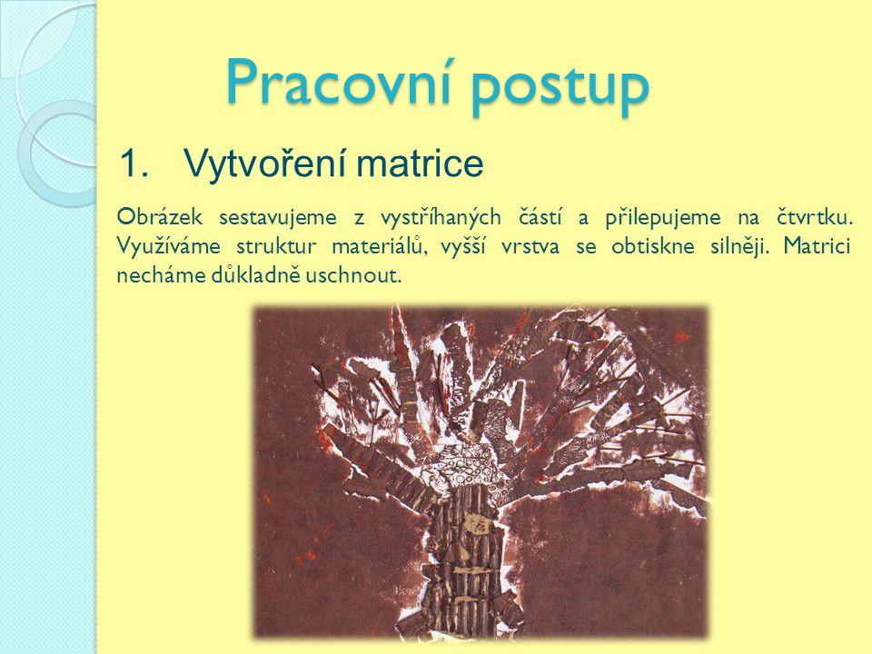 Pracovní postup 1. Vytvoření matrice