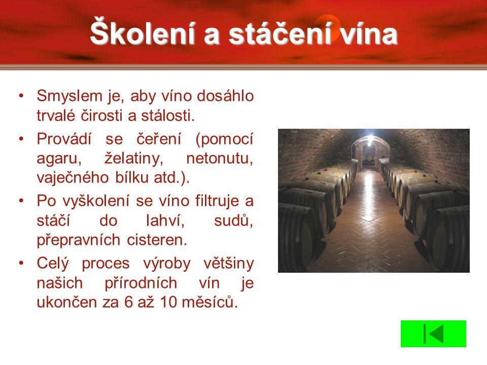 Školení a stáčení vína Smyslem je, aby víno dosáhlo trvalé čirosti a stálosti.