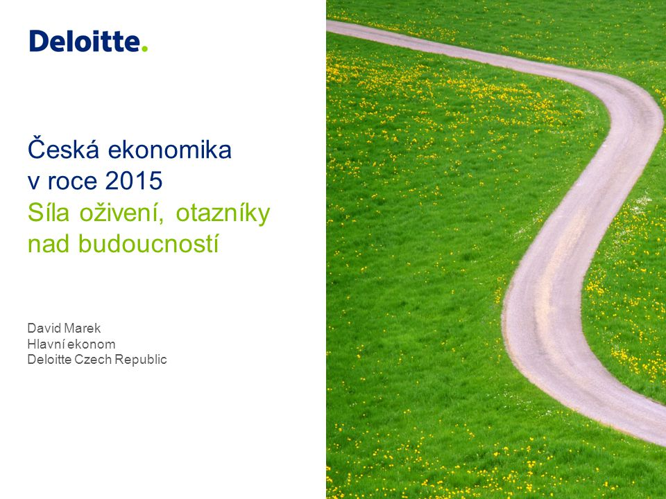 David Marek Hlavní ekonom Deloitte Czech Republic