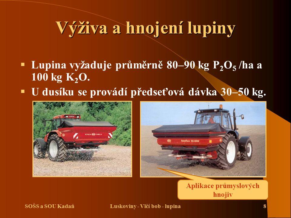 Výživa a hnojení lupiny