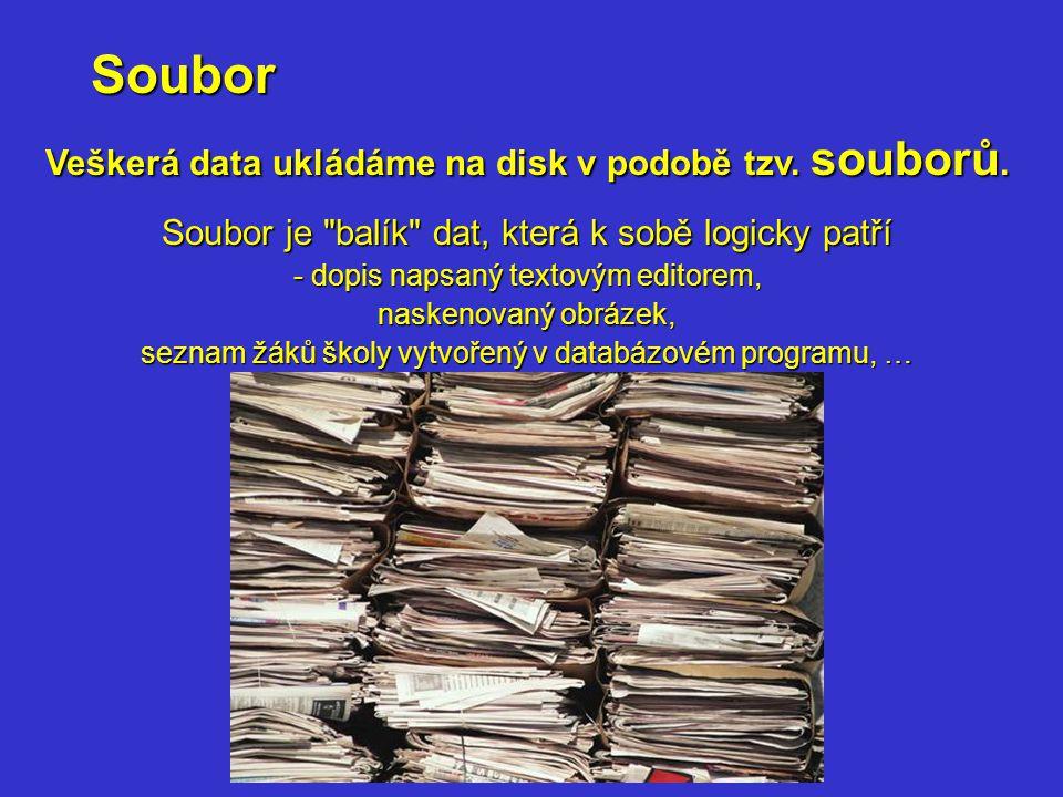 Veškerá data ukládáme na disk v podobě tzv. souborů.