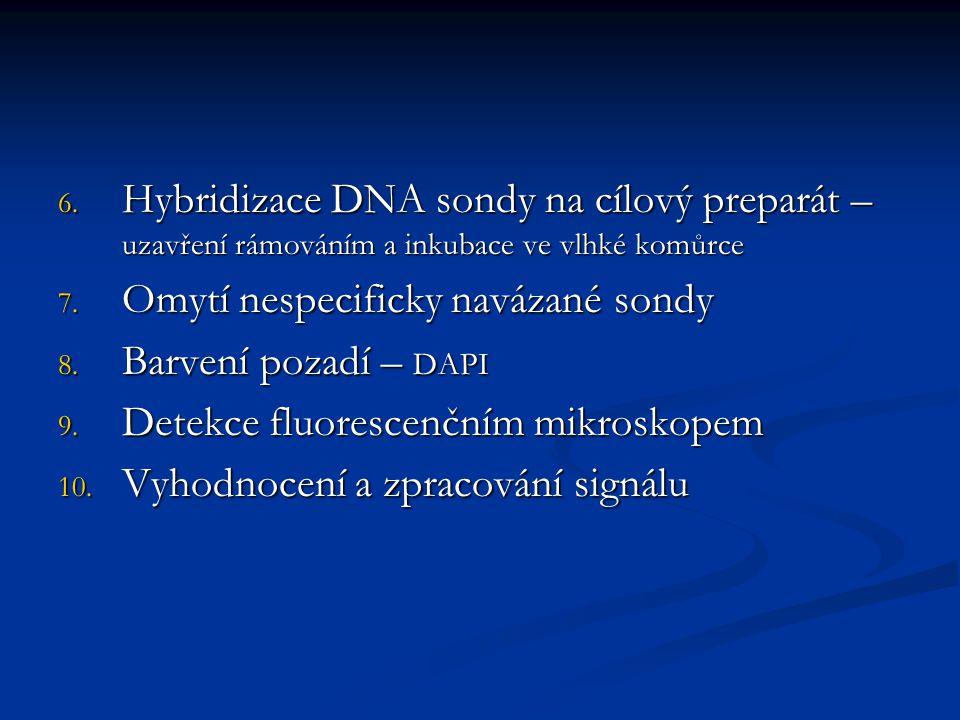 Hybridizace DNA sondy na cílový preparát – uzavření rámováním a inkubace ve vlhké komůrce