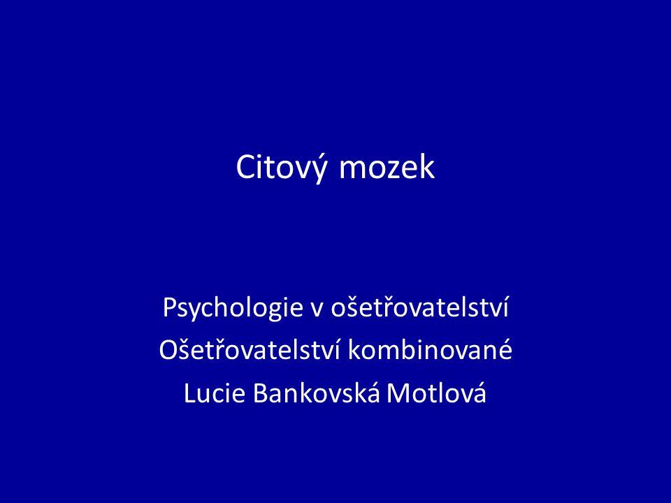 Citový mozek Psychologie v ošetřovatelství Ošetřovatelství kombinované