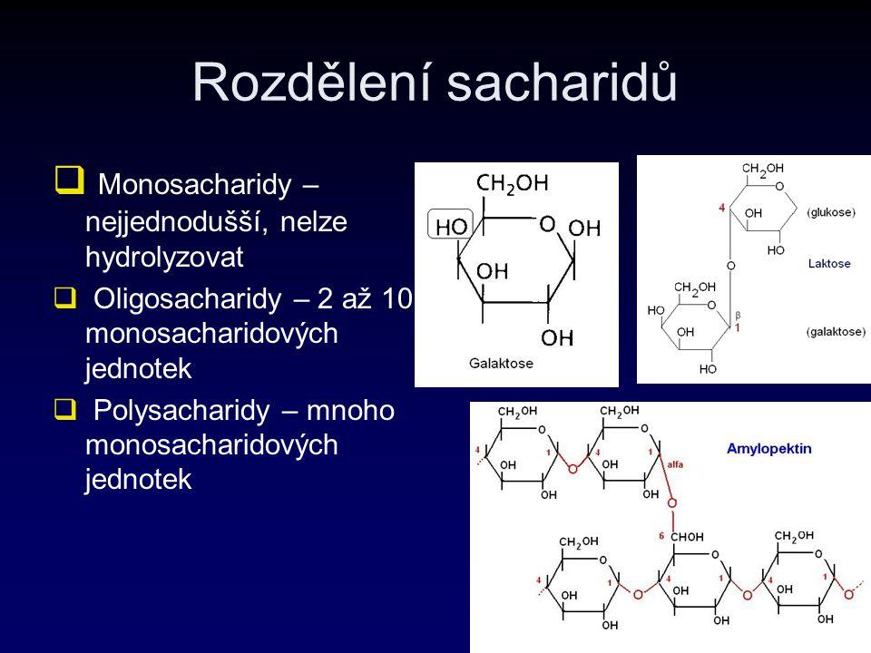 Rozdělení sacharidů Monosacharidy – nejjednodušší, nelze hydrolyzovat