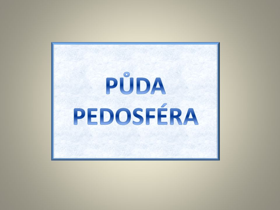 PŮDA PEDOSFÉRA