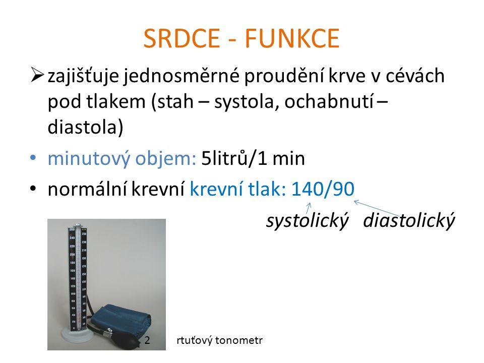 SRDCE - FUNKCE zajišťuje jednosměrné proudění krve v cévách pod tlakem (stah – systola, ochabnutí – diastola)