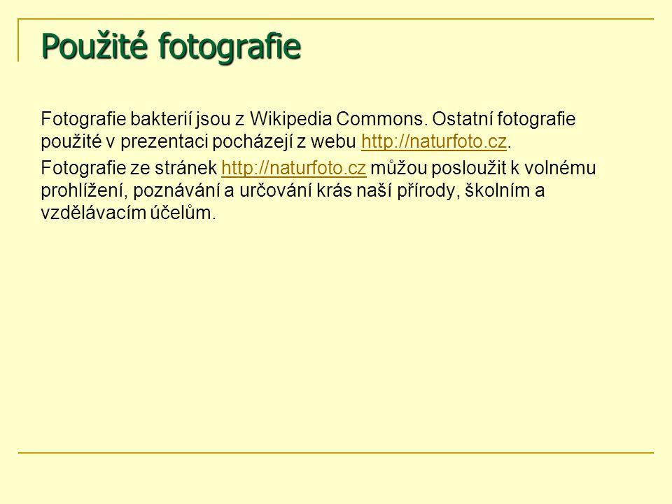Použité fotografie Fotografie bakterií jsou z Wikipedia Commons. Ostatní fotografie použité v prezentaci pocházejí z webu http://naturfoto.cz.