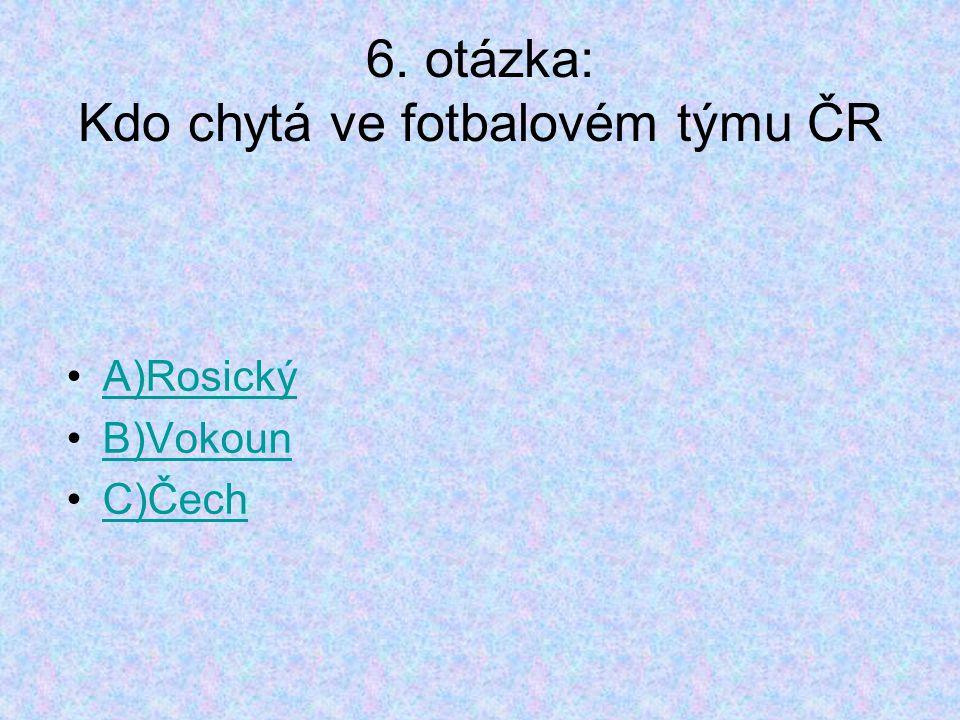6. otázka: Kdo chytá ve fotbalovém týmu ČR