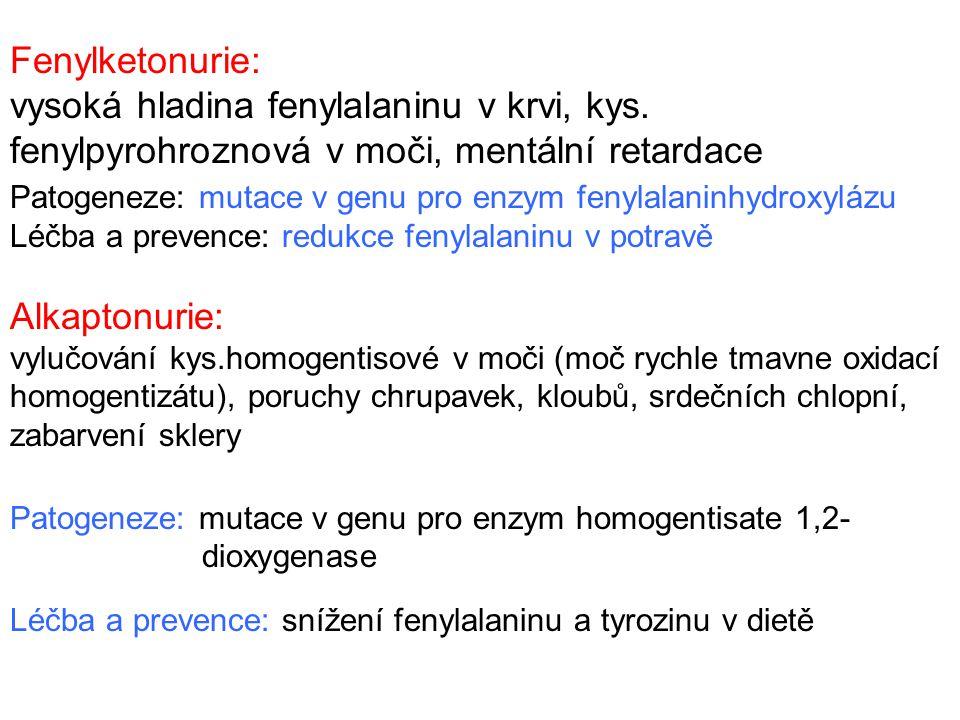 Fenylketonurie: vysoká hladina fenylalaninu v krvi, kys