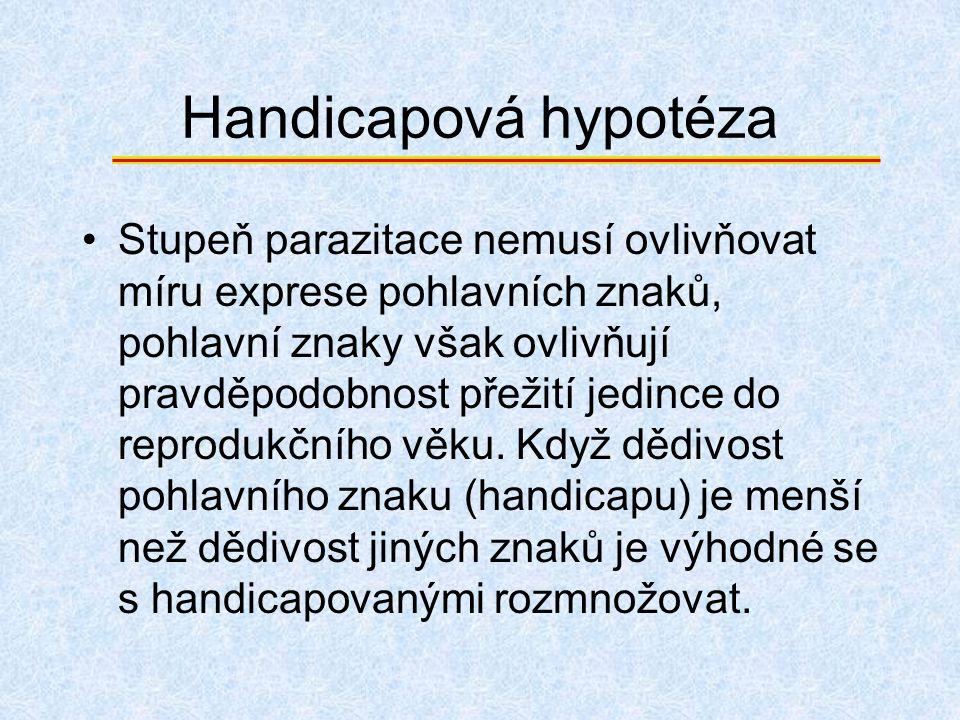 Handicapová hypotéza