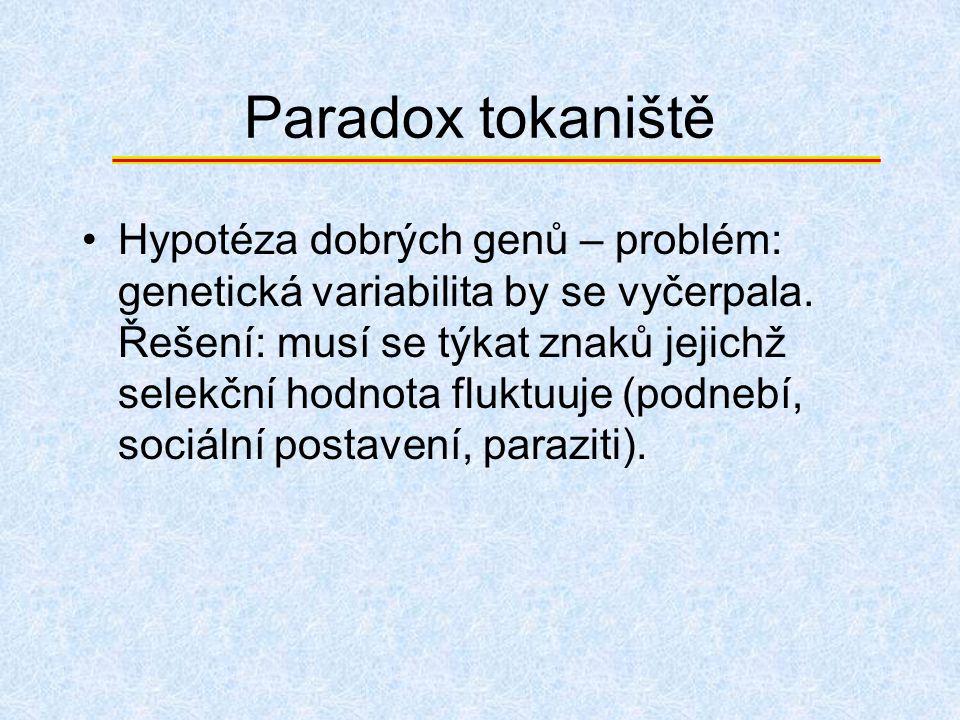 Paradox tokaniště