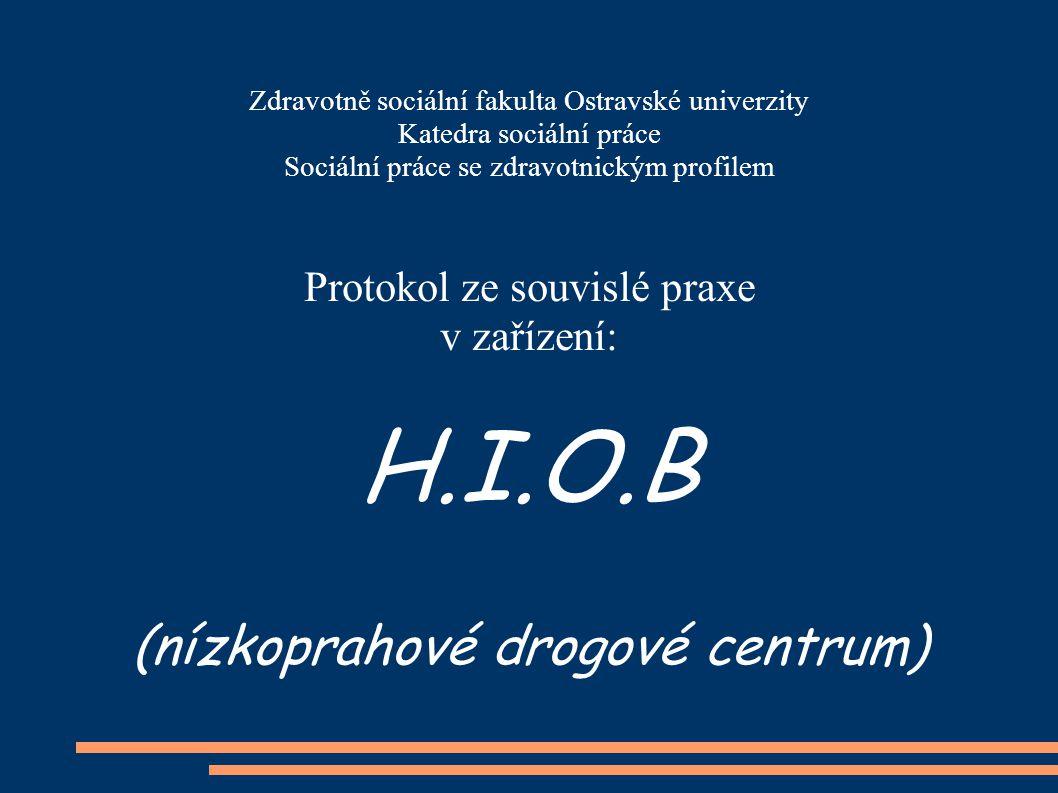 H.I.O.B (nízkoprahové drogové centrum) Protokol ze souvislé praxe