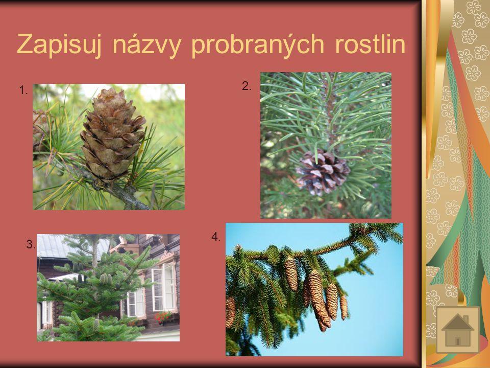 Zapisuj názvy probraných rostlin