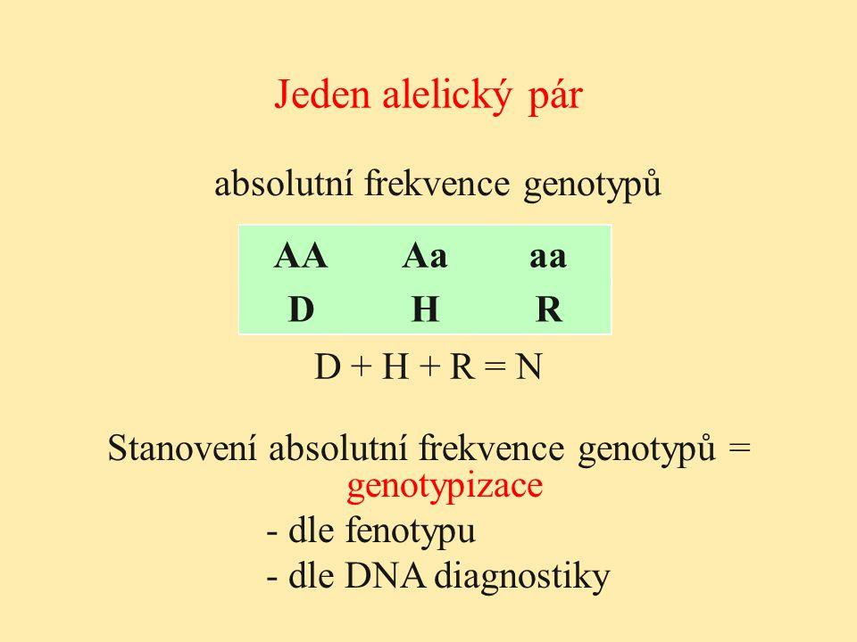 Jeden alelický pár absolutní frekvence genotypů AA Aa aa D H R AA Aa