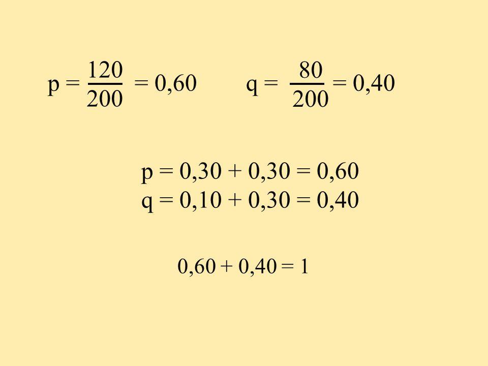 120 200. 80. 200. p = = 0,60 q = = 0,40. p = 0,30 + 0,30 = 0,60. q = 0,10 + 0,30 = 0,40.