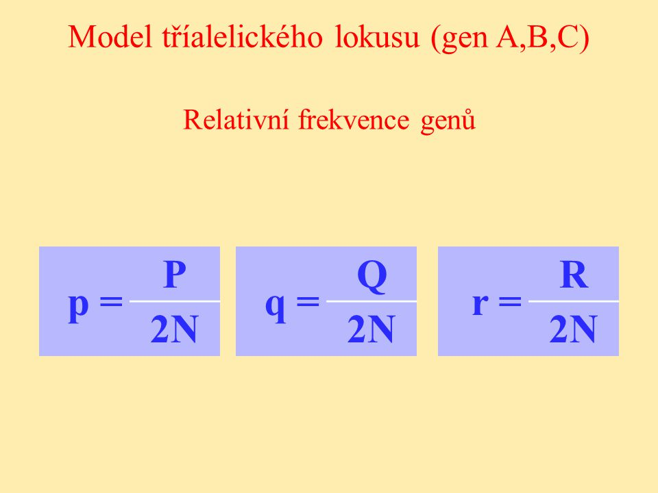 p = P 2N q = Q 2N r = R 2N Model tříalelického lokusu (gen A,B,C)