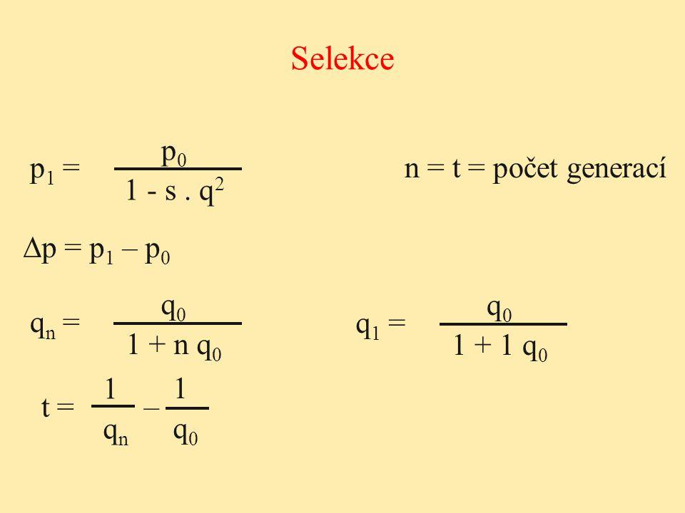 Selekce p0 1 - s . q2 p1 = n = t = počet generací ∆p = p1 – p0 q0