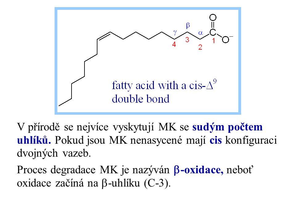 V přírodě se nejvíce vyskytují MK se sudým počtem uhlíků