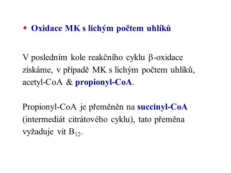Oxidace MK s lichým počtem uhlíků