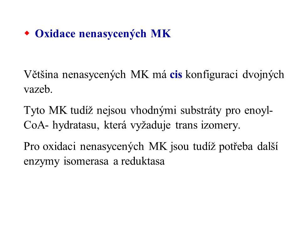 Oxidace nenasycených MK