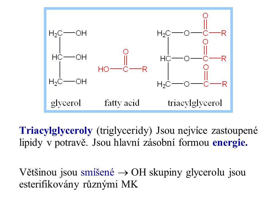 Triacylglyceroly (triglyceridy) Jsou nejvíce zastoupené lipidy v potravě. Jsou hlavní zásobní formou energie.